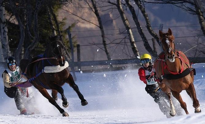 Ski joëring estación esquí Aillons