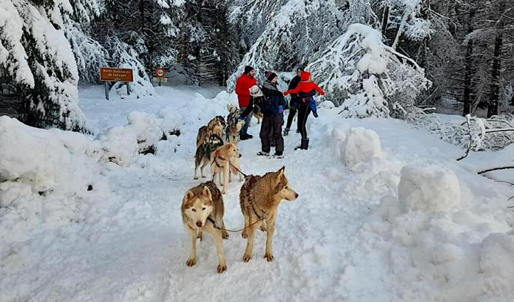 Isola 2000 ski resort