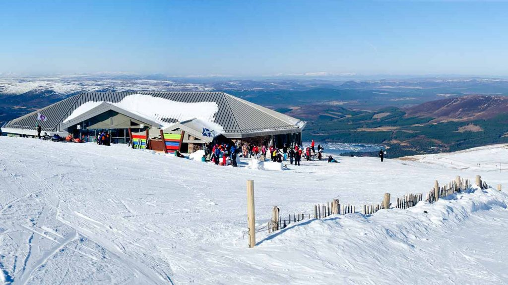 Cairngorm -Ptarmigan - snow - ©Tim Winterburn